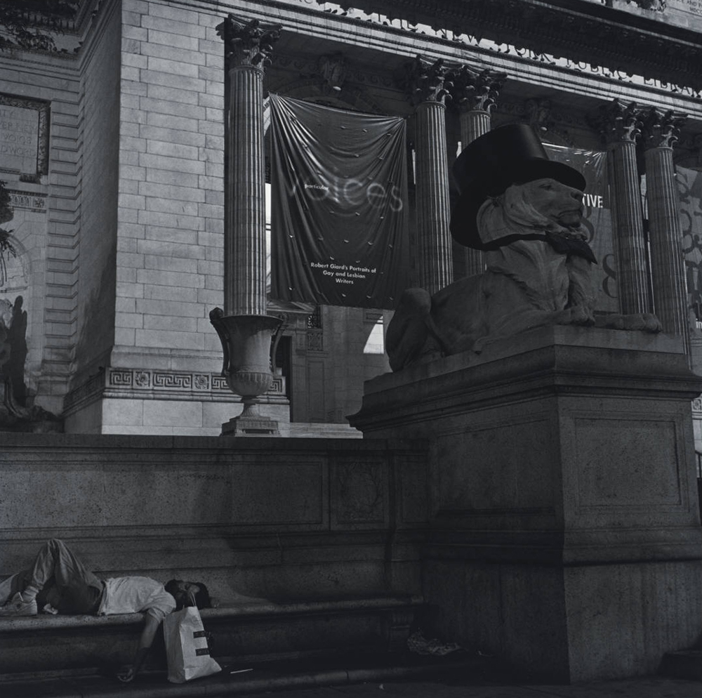'Particular Voices' banner, NY Public Library, 1998